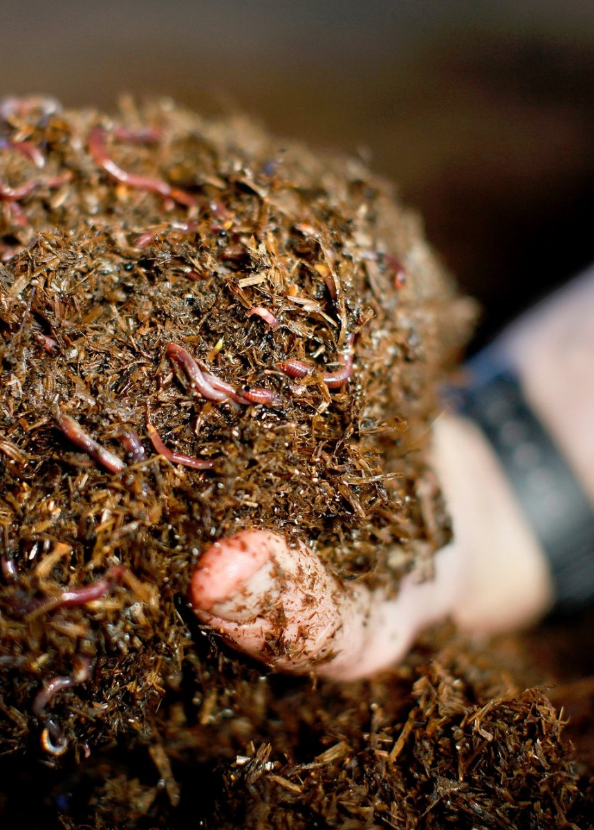 , Soil Health, TerraThrive Retail Products